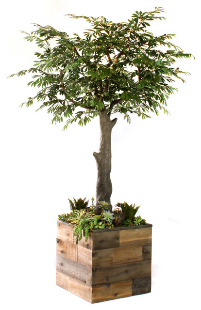 Faux olive tree and succulent garden 8 mediterranean