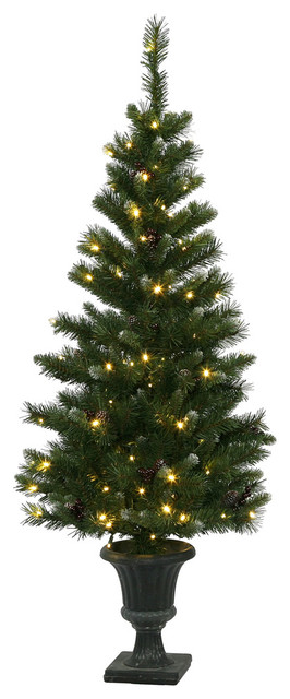 5 x 27quot Ashberry Potted Tree 120LED WmW Traditional  : traditional christmas trees from www.houzz.com size 266 x 640 jpeg 50kB