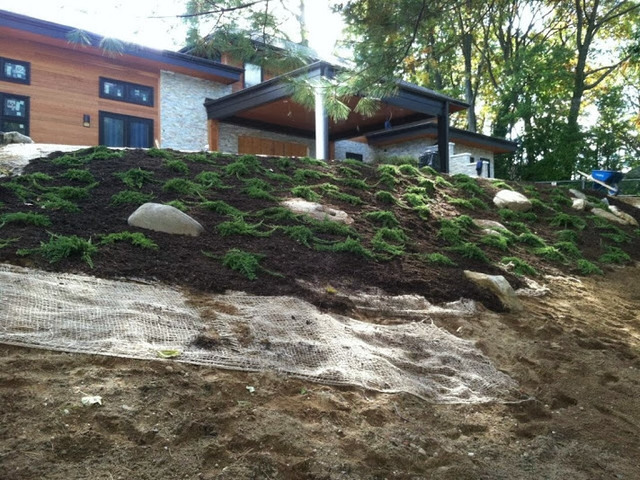 Backyard Hill Erosion : Planting on hills erosion control  Asian  Landscape  new york  by