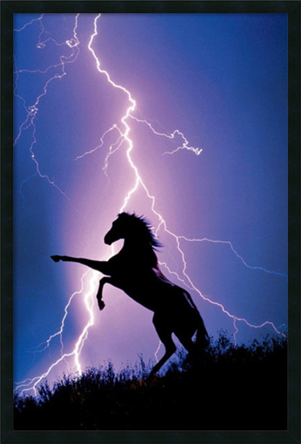 Lightning and Silhouette Of A Horse Framed With Gel Coated Finish - Traditional - Prints And ...
