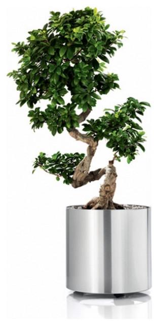blomus blumentopf greens rund auf rollen edelstahl. Black Bedroom Furniture Sets. Home Design Ideas
