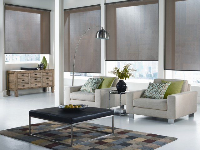 Lovely Window Blinds And Shades Ideas Part - 8: Window Blinds And Shades Ideas