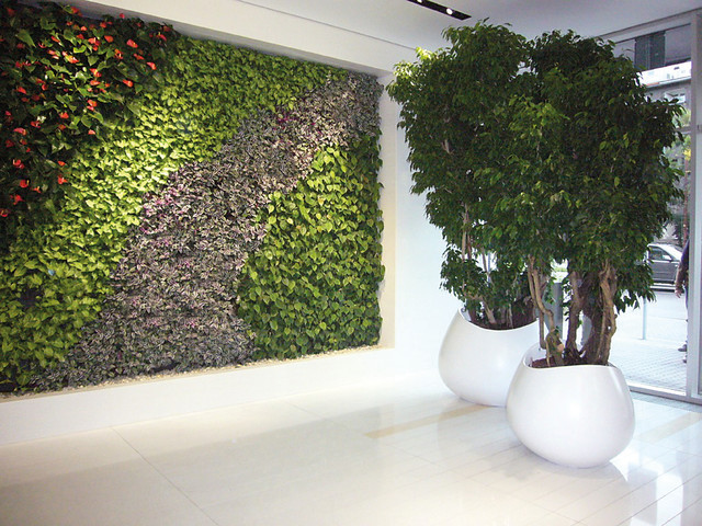 Indoor plants and planters modern indoor pots for Indoor plants modern design