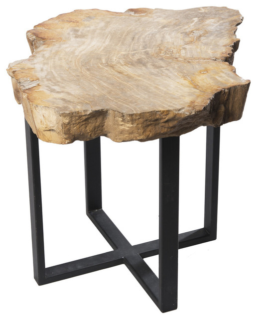 Petrified wood williamsburg side table contemporary