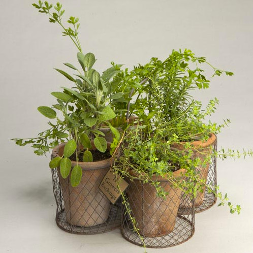 Indoor Herb Planters Easy Planning Herb Planter Garden Planter