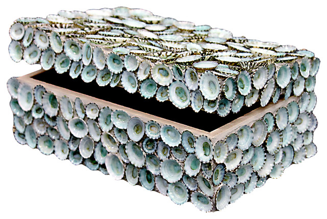Oyster Bay Coastal Blue Limpet Shell Decorative Box