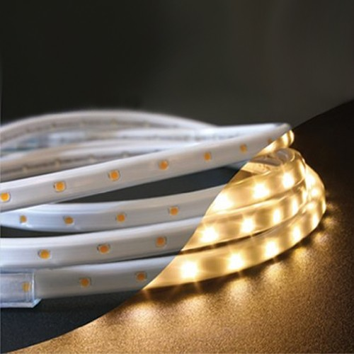 LED Rope Light Kit - Transitional - Outdoor Rope And String Lights - by Destination Lighting