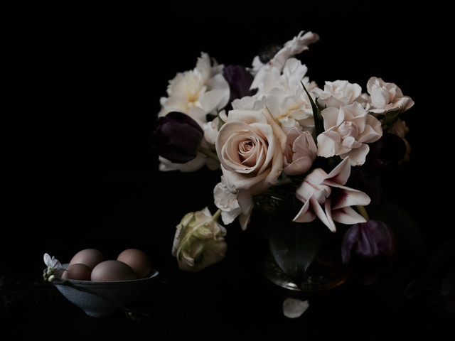 Contemporary bathroom vanity lighting - Fine Art Floral Photography Contemporary By Lucy Snowe Photography