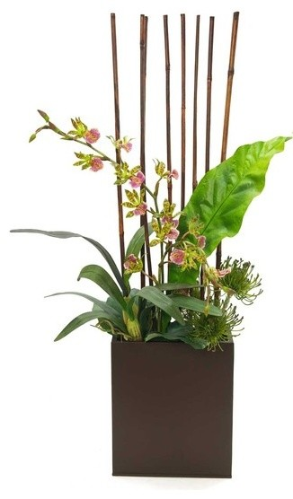 Fosters Point Tin With Orchid Protea Bamboo Arrangement
