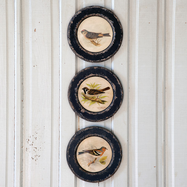 Round Vintage Bird Prints Set Of 3 Eclectic Artwork Atlanta By Iron Accents
