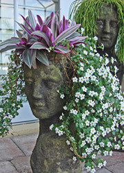 Lady Head Planter Eclectic Indoor Pots And Planters