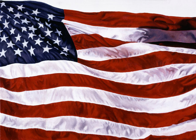 American flag wall mural contemporary wallpaper by for American flag bedroom ideas