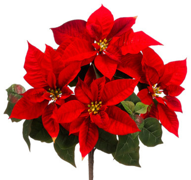Artificial flowers plants and trees by silk plants direct
