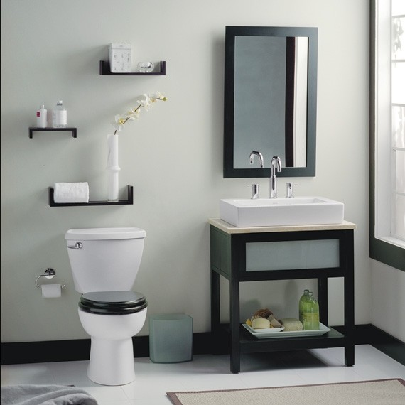 American Standard Cadet 3 Flowise Round Front Total Toilet Toilets New York By Expressdecor