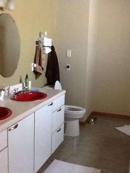 I need help with my 90 39 s bathroom for I need my bathroom remodel