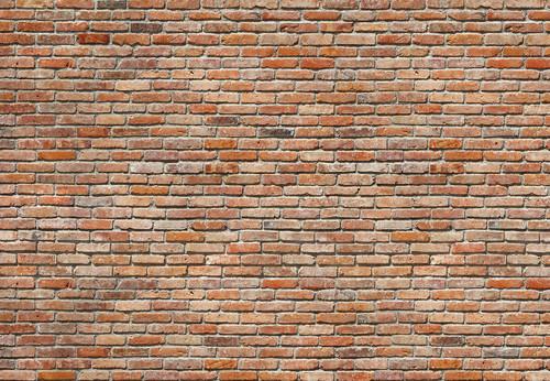 Exposed Brick Wall Mural