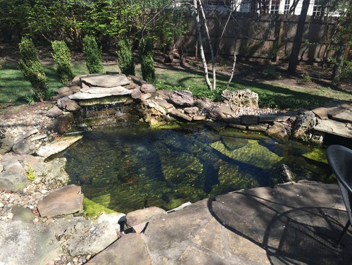 Koi pond to hut tub conversion for Koi pond tubs