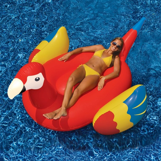Swimline Giant Parrot Pool Float 90629 Contemporary Pool Toys And Floats By Hayneedle
