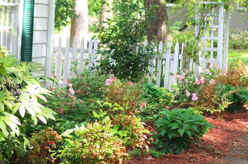 New Perennial Garden With Creative Sun Shade Ideas