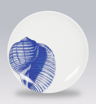 Blue shells canape plates contemporary serveware los for What is a canape plate used for
