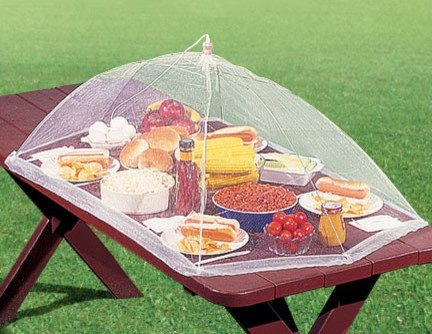 Picnic Table Food Tent Contemporary By Harriet Carter