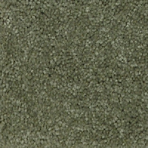 Light green carpet wall color carpet vidalondon for Wall to wall carpet colors