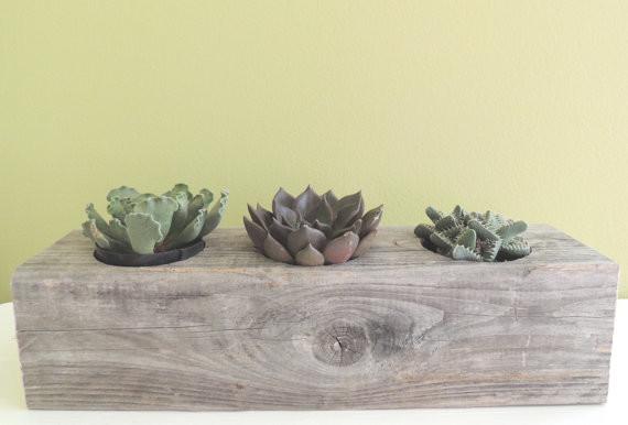 Reclaimed cypress rectangular succulent planter by le brun designs inc modern indoor pots - Rectangular succulent planter ...