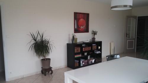 Comment d corer le grand mur de mon salon for Home designer 8
