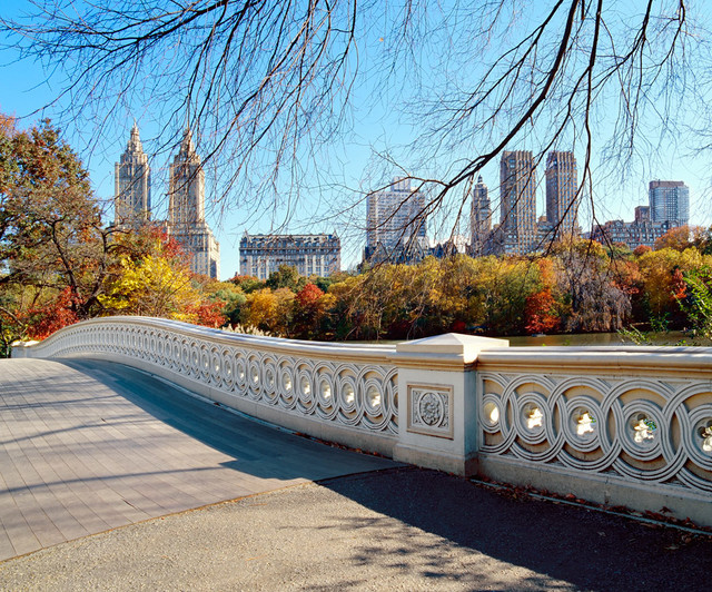 Bow bridge in autumn central park wall mural for Central park mural