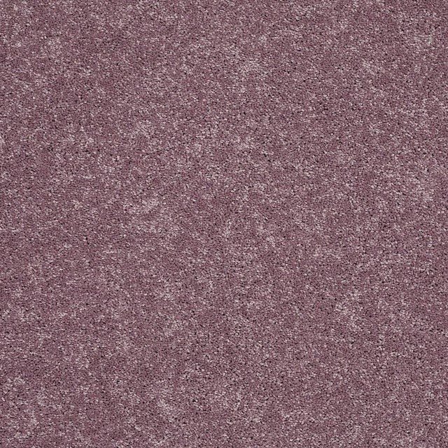 Softer landing ii by resista soft style chicago di for Home carpet one chicago