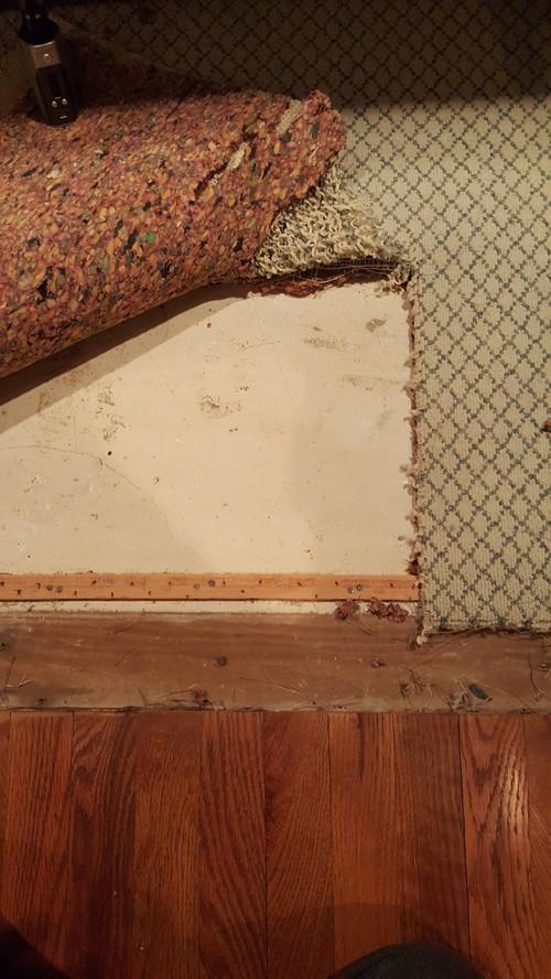 Flooring Dilema