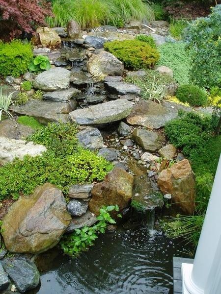 Backyard garden waterfalls traditional landscape for Pictures of backyard waterfalls