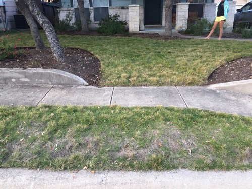 Speaking, would instead of grass strip by street commit error