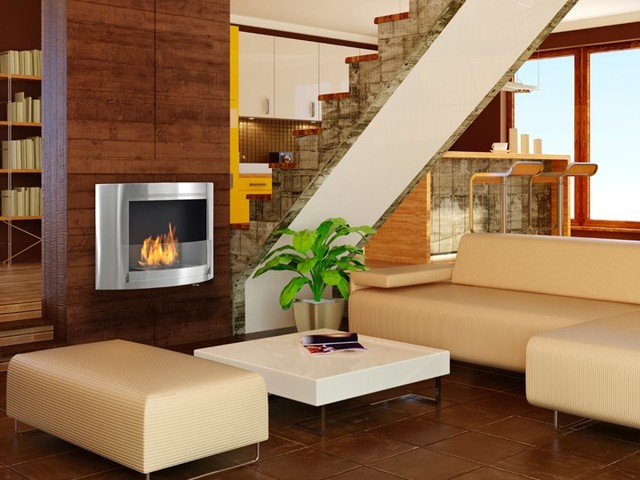 Eco Feu Olympia Biofuel Fireplace Contemporary Indoor Fireplaces Portland By Ventless