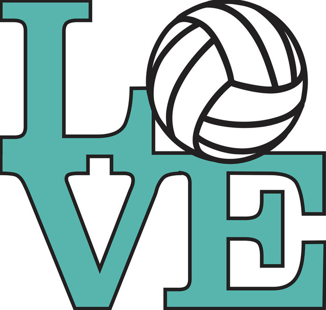 Love Volleyball - Teal Wall Mural - Contemporary - Wall Decals - by Murals Your Way