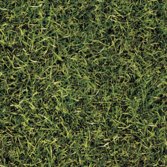 Grass Tile Tile By Imaginetile Com