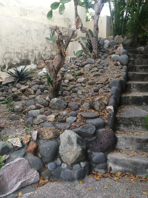 Help me landscape this home in mexico for Help me design a garden