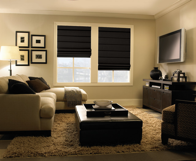 Roman Shades Contemporary Living Room Houston By