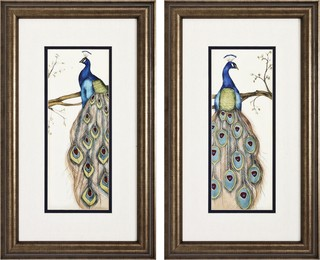 Contemporary Set of Two Peacock I & II Framed Wall Art ...