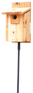 Stovall Western Mountain Bluebird House Rustic