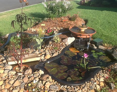 Build a backyard fish pond without going belly up for How much does it cost to build a fishing pond
