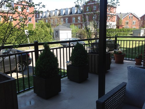 Help Me Spruce Up My Patio