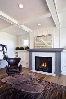 Heat & Glo TRUE Series Gas Fireplaces