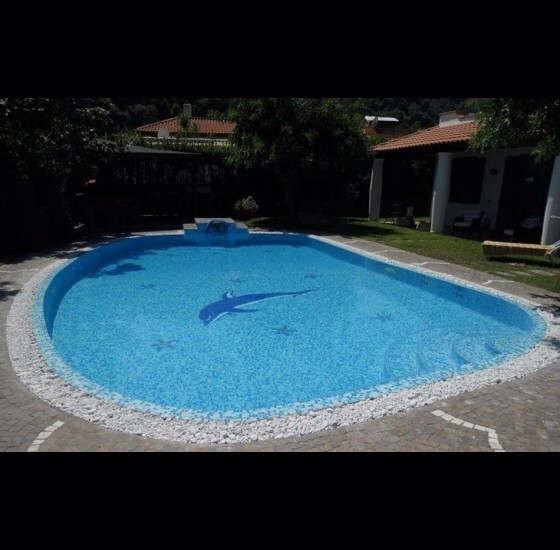 Swimming pool for Swimming pool design new zealand