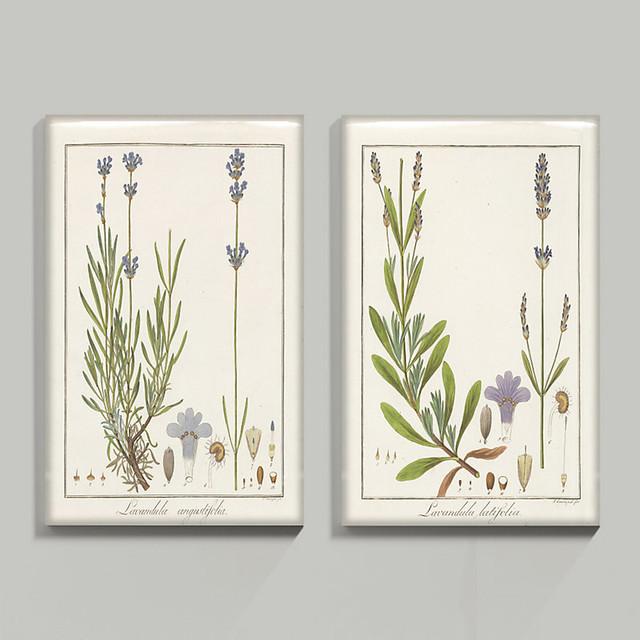 ballard designs heines lavender glass coat 32 x 24 morning light stretched canvas