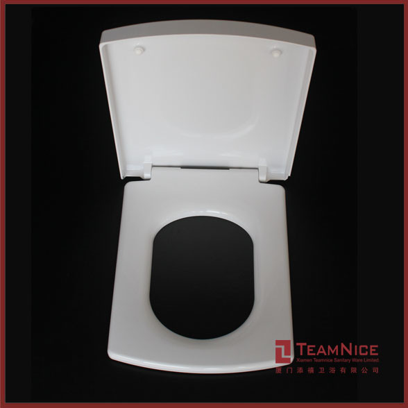 square toilet seat uk. Japanese Wooden Toilet Seat  Comfort Seats C050wd00 Molded Wood Square Front Elongated Plumbing