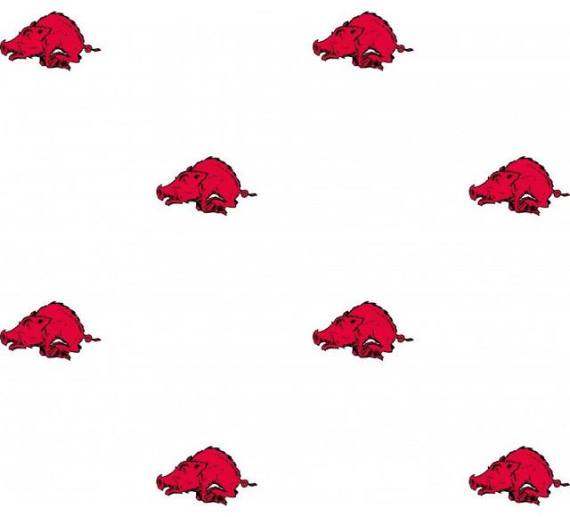 ncaa arkansas razorbacks college logo double wallpaper