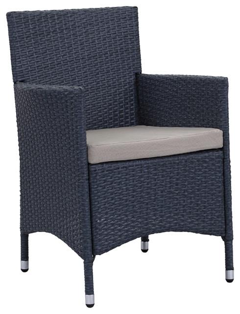 Safavieh Kendrick Outdoor Chair Set Of 2 Titanium Sand