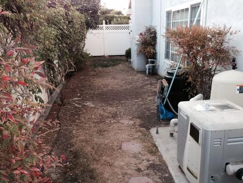 Landscaping Ideas Along Side Of House : Help narrow side yard landscape ideas needed