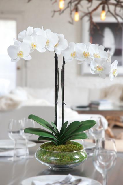 Silk Orchid Arrangement Nature Modern Artificial